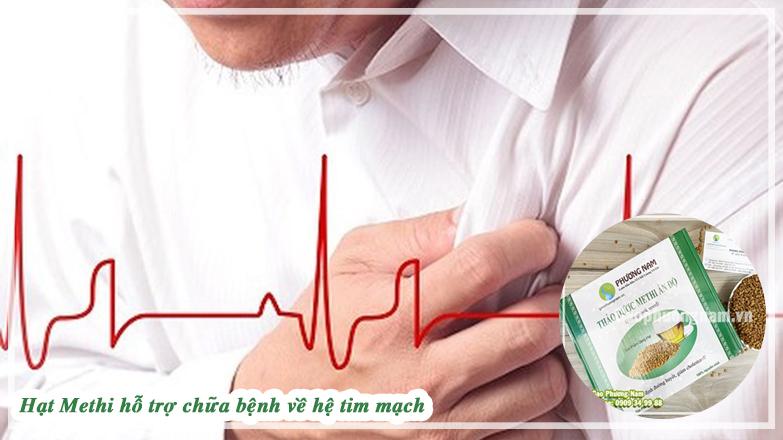 Hạt methi hỗ trợ chữa bệnh về tim mạch