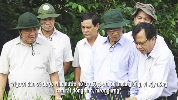 Thăm cánh đồng lúa trồng giống ST24 ở thị xã Giá Rai
