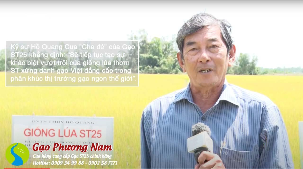 Kỹ sư Hồ Quang Cua tại ruộng lúa ST25 của ông