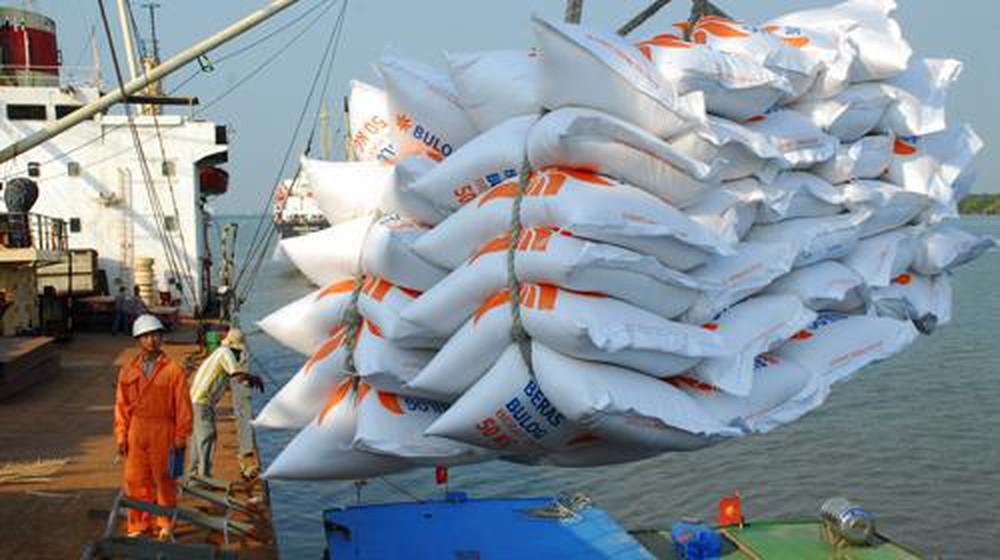 Vận chuyển xuất khẩu gạo thơm Việt Nam đến các thị trường khác