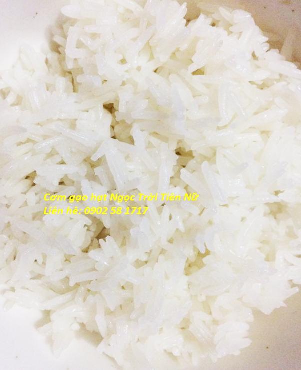 Cơm gạo hạt Ngọc Trời Tiên Nữ