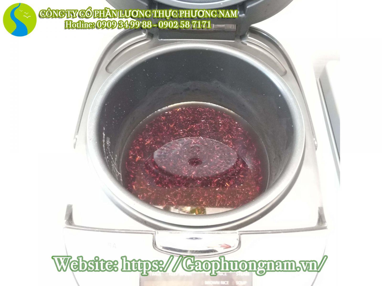 Nấu gạo lứt sóc trăng st đỏ bằng nồi cơm điện