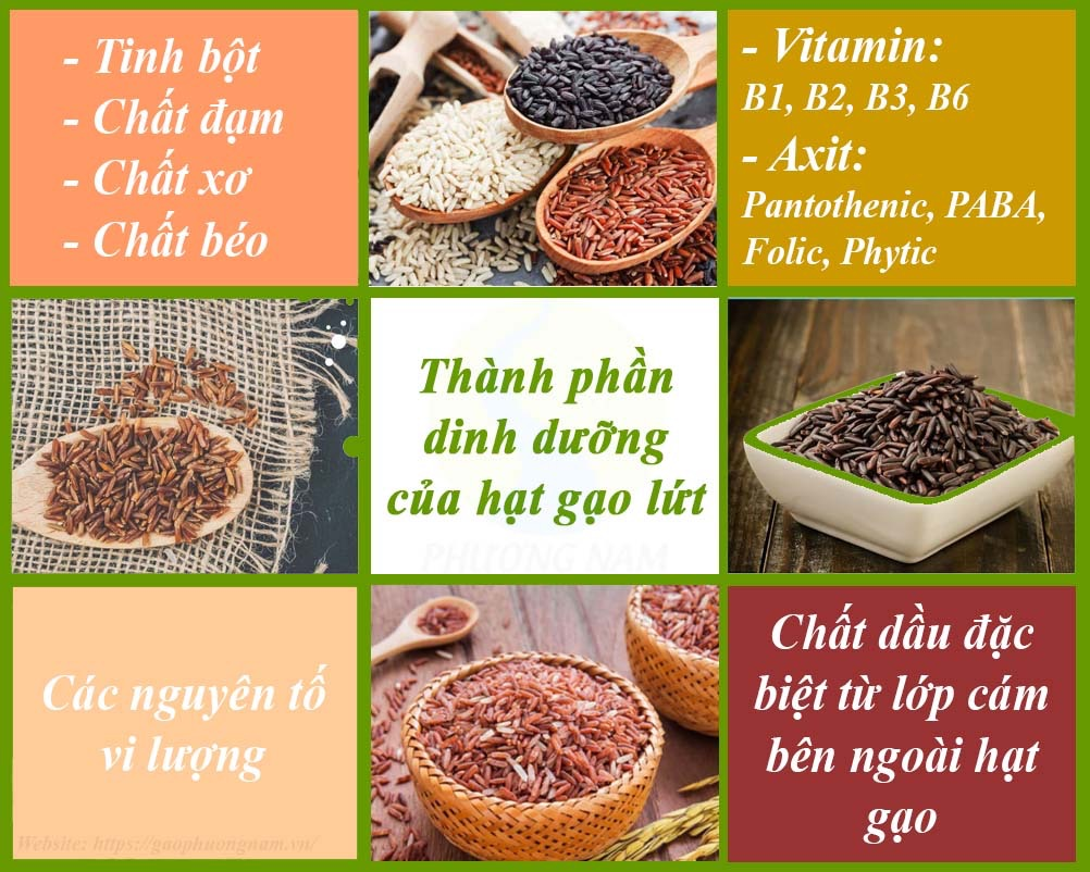Thành phần dinh dưỡng có bên trong hạt gạo lứt