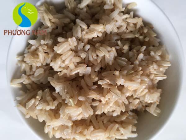 Cơm gạo mầm GABA ST24 rất mềm, thơm ngon và dễ ăn.