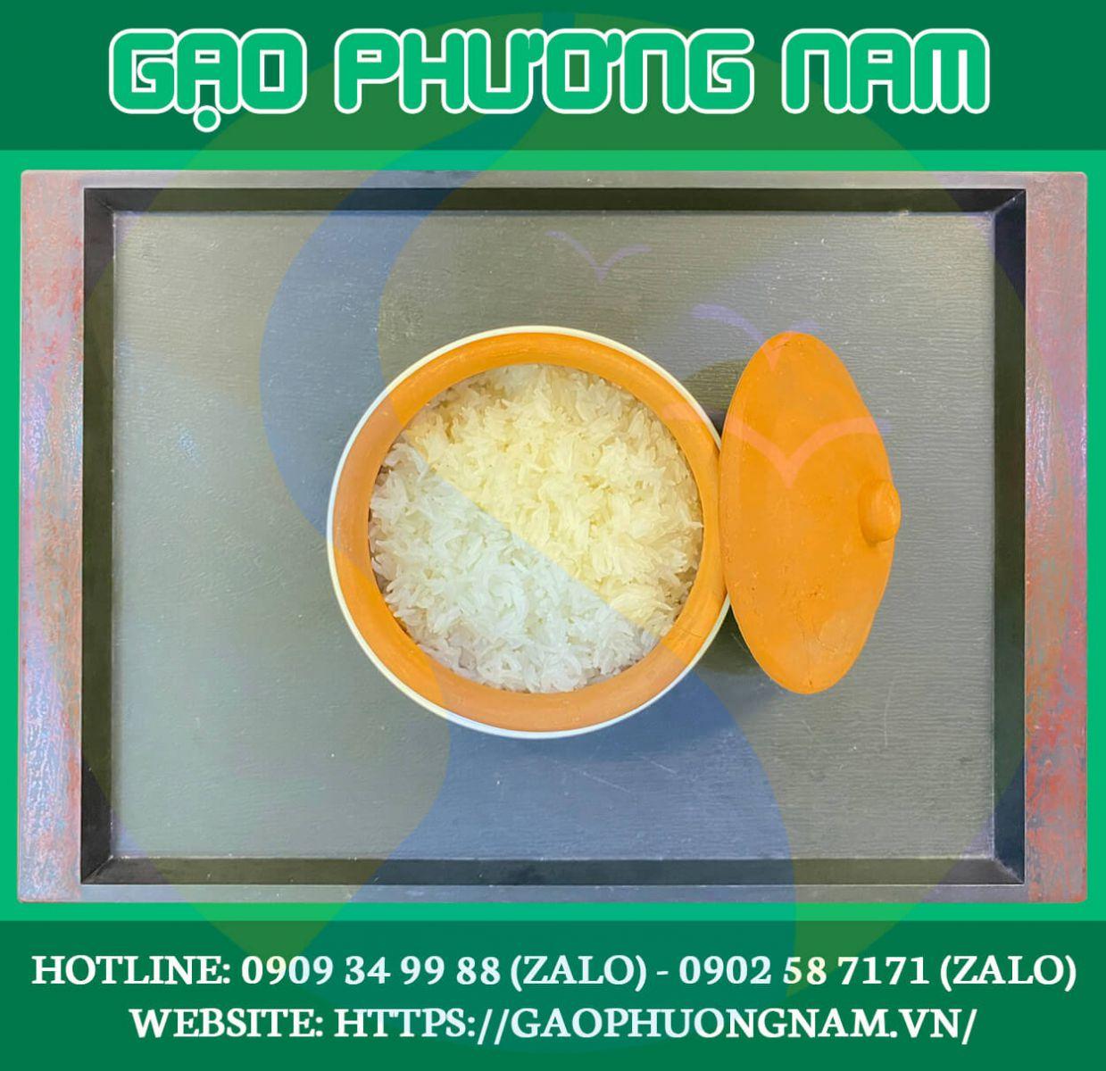 Cơm gạo ST24 đều hạt không kết dính, không bị tơi xốp sau khi nấu