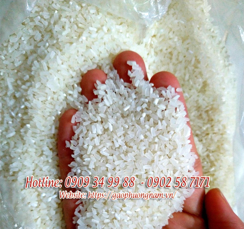 Hạt gạo tấm thơm ST25-ST24